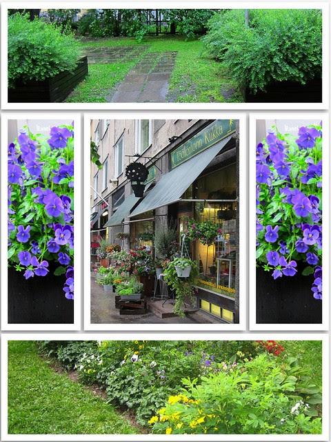 Kesä kaupungissa vihreää