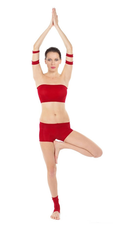 http://upload.wikimedia.org/wikipedia/commons/7/72/Vriksasana_Yoga-Asana_Nina-Mel.jpg
