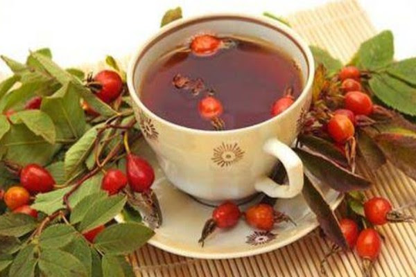 травяной чай, как заварить травяной чай, когда собирать травы, как правильно заваривать травяной чай, польза травяного чая, полезные травы