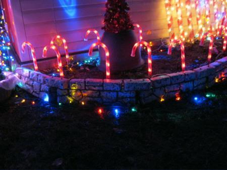 christmas lights big lots