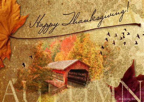"""Happy Thanksgiving""   Thanksgiving eCard   Blue Mountain"