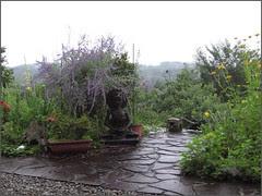 01 lavender on Buddha