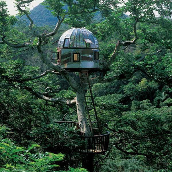 amazing-treehouses-19
