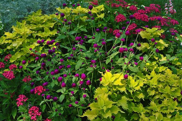 Grace Arents Garden (5)