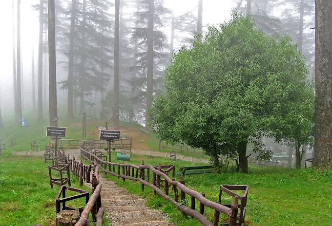 DHANAULTI - 7 Reasons To Visit This Wonderland