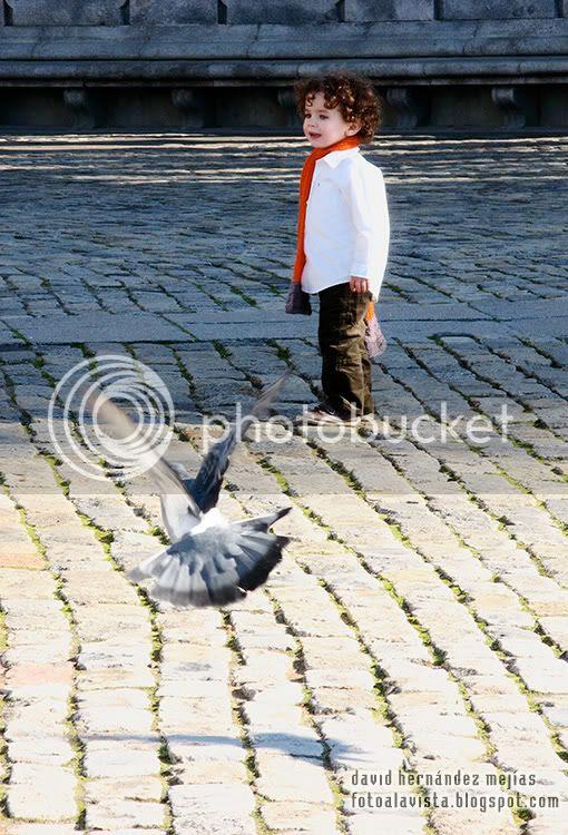 Una paloma vuela en direccion a un niño en el Parque del Buen Retiro de Madrid