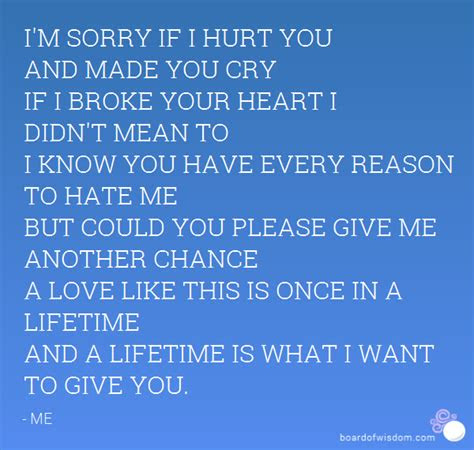 Didnt Mean To Hurt You Quotes
