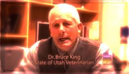 Dr Bruce King