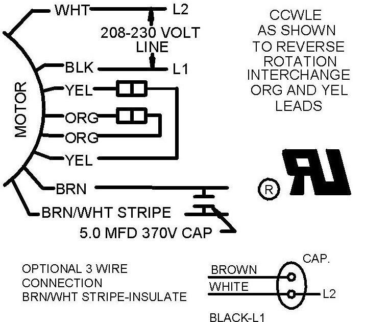 Diagram  Craig We R Trying To Wire An Electric 220 V Motor For Our Wiring Diagram Full Version
