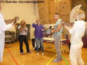 Abyssinerkattene: Estilo, Valentino og Shakria i kampen om å bli BIV (best i farge). Det ble Valentino som ble BIV :)