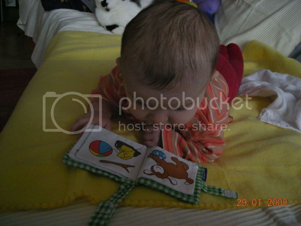 beim lesen Pictures, Images and Photos
