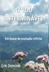 O VOO INTERMINÁVEL EM BUSCA