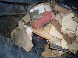 Documentos são achados em sacos de lixo (Foto: Divulgação/ Tércio Gaudêncio)