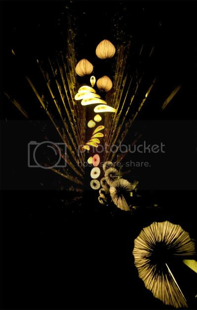 Aqua Creation & Michael Azulay Invite U into 2oo8 Designers' Saturday