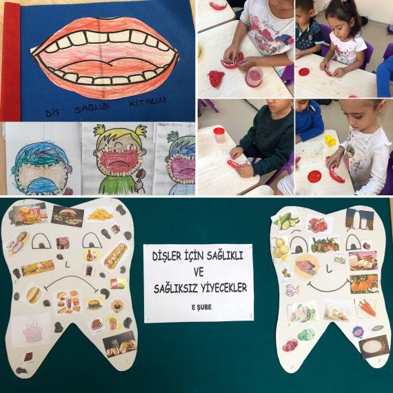 Ağız Ve Diş Sağlığı Eğitim Bilişim Ağı