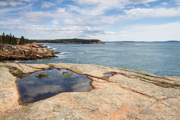 reflections in a pool, Acadia National Park