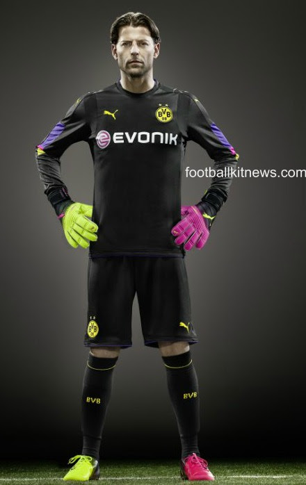 Weidenfeller Goalie Kit 2016 17