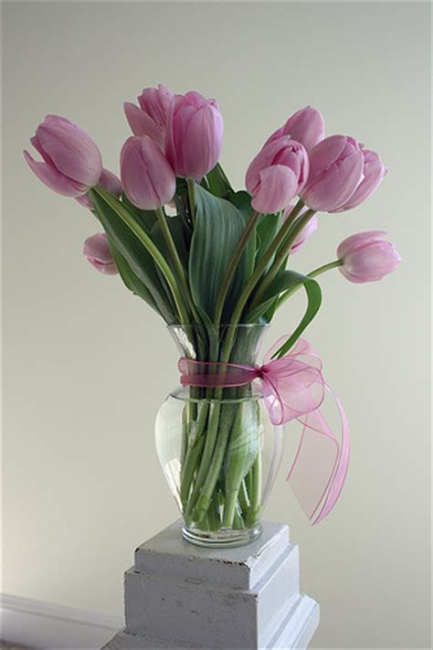 Cheap Tulip Wedding Centerpieces   Inexpensive Wedding Flowers
