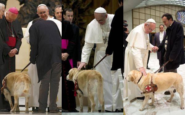 El Papa bendijo al perro guía de un periodista ciego