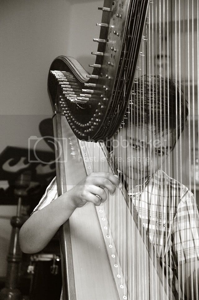 The Harp Player: How to Pull The Right Strings_BW [enlarge]