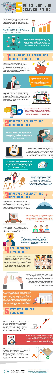Get-Maximum-ROI-from-ERP-Infographic