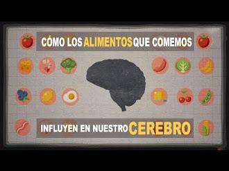 Cómo INFLUYE los alimentos que comemos en nuestro cerebro