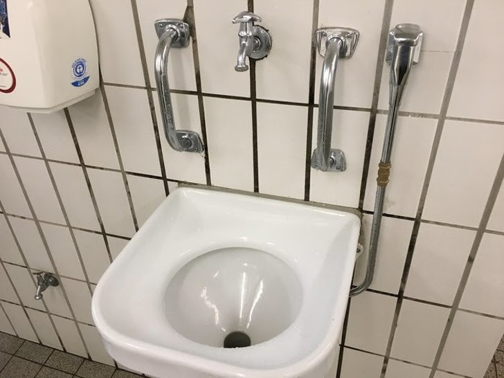 2 - You can find these types of sinks in Germany. They are for people who drank too much.