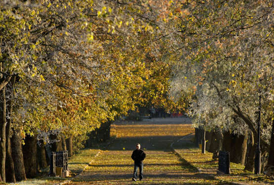 A man walks as leaves fall in a partially frozen park on an autumn day in the town of Nesvizh, some 130 km (81 miles) southwest of the capital Minsk, Belarus, Sunday, Oct. 17, 2010. (AP Photo/Sergei Grits)