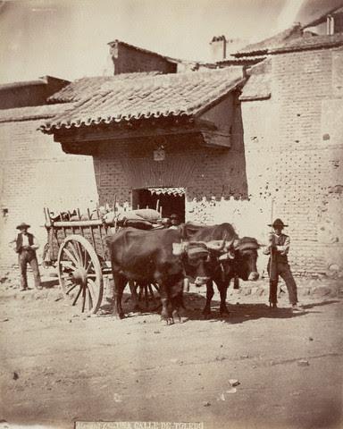 Carro de Bueyes en Toledo hacia 1880. Fotografía de Casiano Alguacil. Image by © Alinari Archives/CORBIS