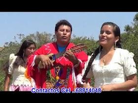 Ladonchis chola - Miguel Vedia (Charangueada)