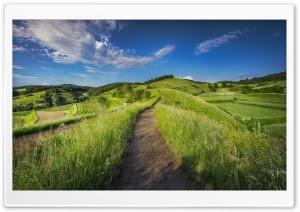 WallpapersWide.com | Free HD Desktop Wallpapers for ...