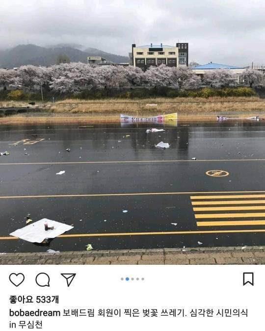 벚꽃축제 시민의식 근황.jpg | 인스티즈