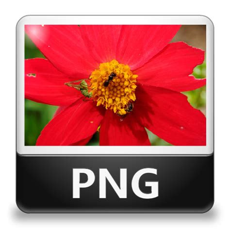 png file icon lozengue filetype icons softiconscom