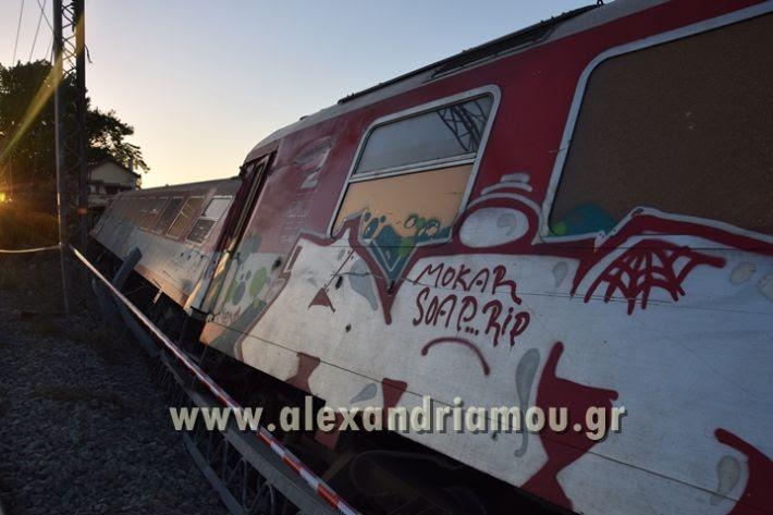 alexandriamou_treno_adentro2052
