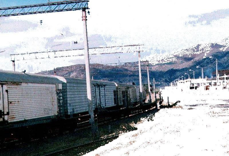 avchala-train-coll