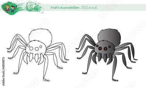 ausmalbild spinne kostenlos  cartoonbild