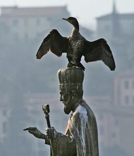 Un Cormorano si asciuga sulla statua di S. Nicolò a Lecco