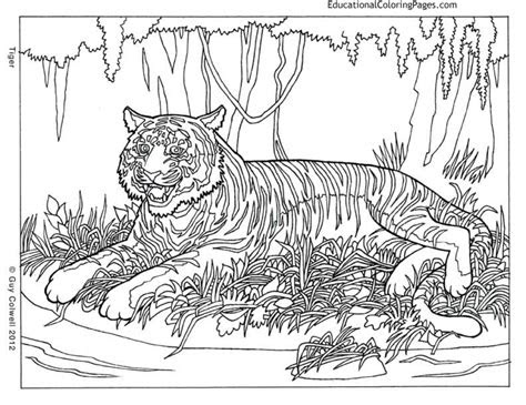 printable difficult animals coloring pages
