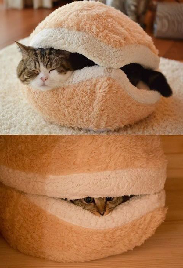 cute-cat-bed-decoration