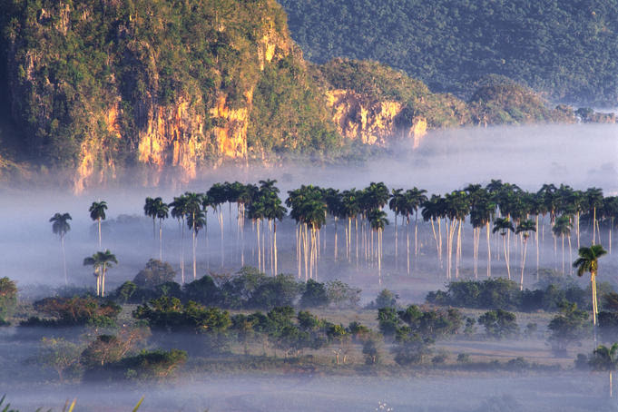 Morning mist over Vinales Valley.