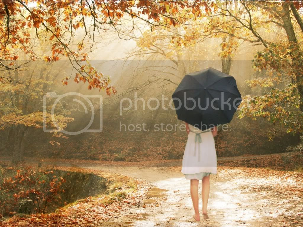fantasy rain Pictures, Images and Photos