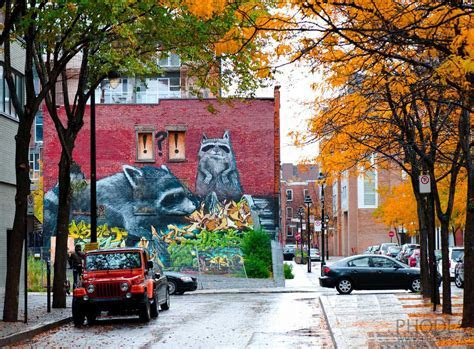 Top 5 places around Montreal to take fall pictures