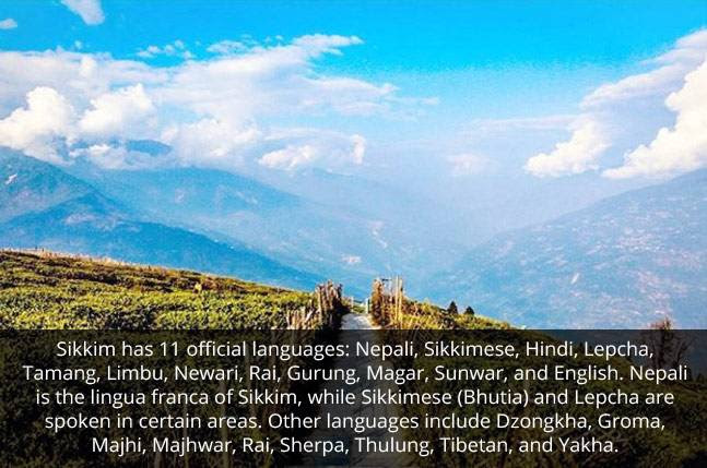 Image result for sikkim nepal asam picture