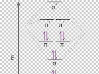 Cn Molecular Orbital Diagram