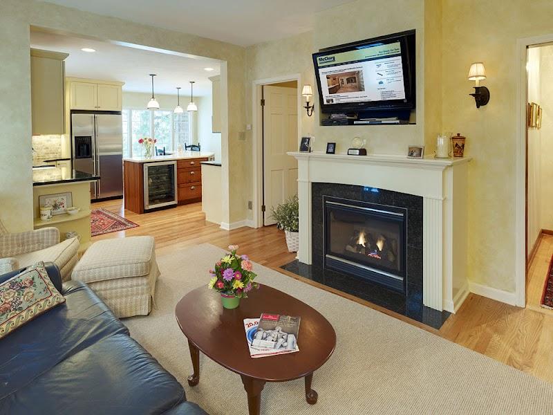 Cool Gas Fireplace Insert Design Ideas Photos