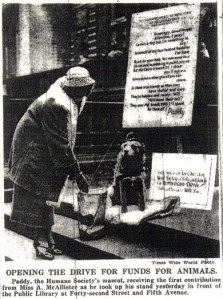 Paddy Reilly, mascot of Humane Society of New York