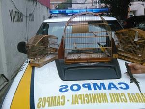 Os animais foram encaminhados para a 134ª DP, onde a ocorrência foi registrada (Foto: Divulgação/Prefeitura de Campos)