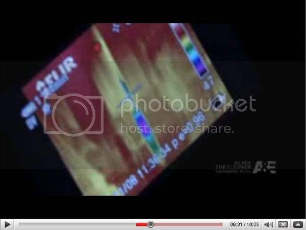 Budweiser beer can video image
