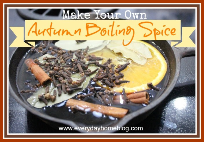 Autumn Boiling Spice by The Everyday Home