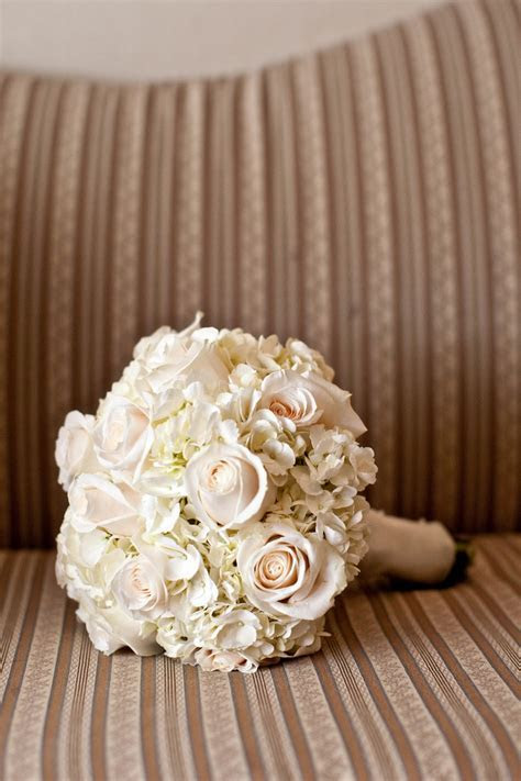 17 Best images about All White Roses, Hydrangea, and